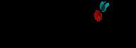 solidseovpslogo